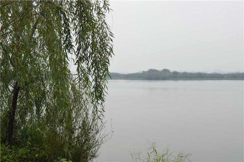 半岛1号梅冲湖景