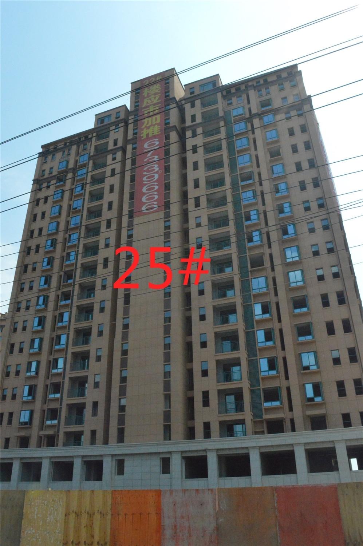 东方明珠嘉苑25#工程进度(2015.9.20)