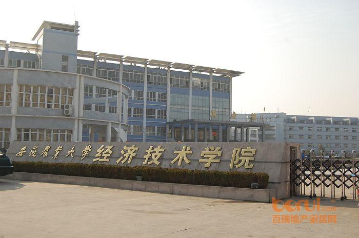 安农大经济技术学院